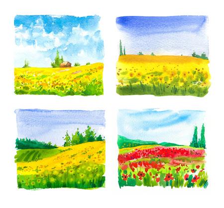 Photo pour Set of watercolor  with landscape sunflower and poppy fields. - image libre de droit