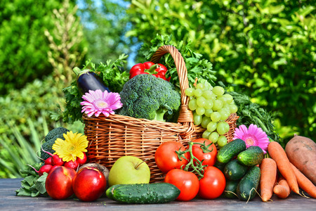 Variety of fresh organic vegetables and fruits in the garden. Balanced dietの写真素材