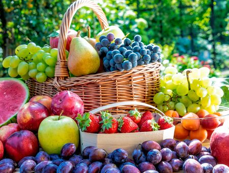 Photo for Variety of fresh ripe fruits in the garden. Balanced diet - Royalty Free Image