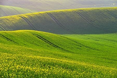 Photo pour Spring sunset landscape photo of Moravian Tuscany in Czech Republic - image libre de droit