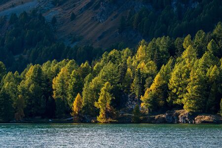 evening light at Lake Sils in Engadine