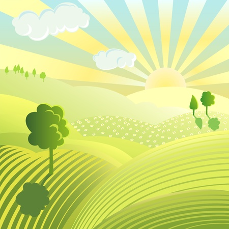 Beautiful landscape. Rural scene with green field and trees on sunny day