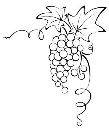 Graphic design - Grapevine