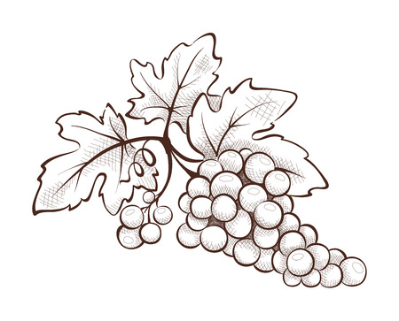 Floral decoration - grape