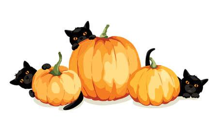 Illustration pour Black kittens play with pumpkins. Funny vector illustration, Halloween card. - image libre de droit