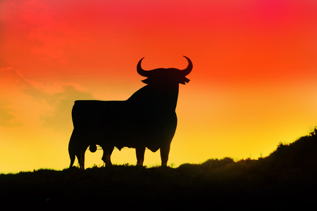 Photo for Symbol of Spain - a black bull built from metal against a background of a bright sunset colors of the Spanish flag - Royalty Free Image