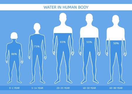 Ilustración de Water in human body. The man at different ages - Imagen libre de derechos