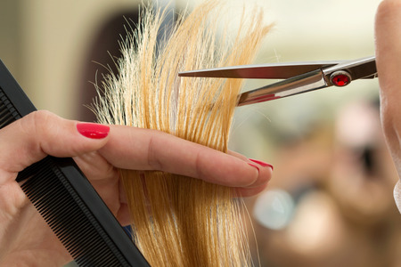 Foto per Close up view of female hairdresser hands cutting hair tips. Keratin restoration, healthy hair, latest hair fashion trends, changing haircut style, shorten split ends, instrument store concept - Immagine Royalty Free
