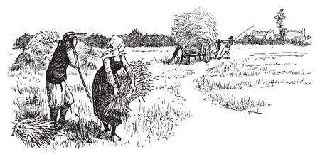 Illustration pour Harvest in Brittany, vintage engraved illustration. Journal des Voyages, Travel Journal, (1879-80). - image libre de droit