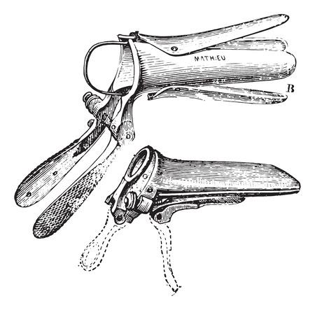 Duckbill Speculum, vintage engraved illustration. Usual Medicine Dictionary by Dr Labarthe - 1885.