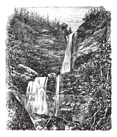 Catskill or Kaaterskill Falls vintage engraving. Old engraved illustration of beautiful cats
