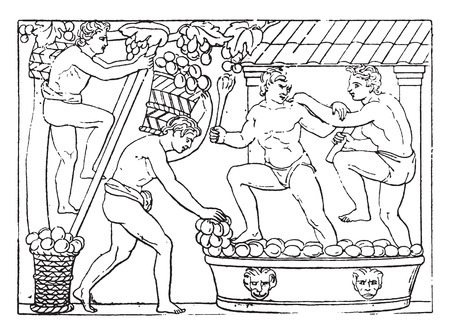 Baskets brought to the press, vintage engraved illustration.
