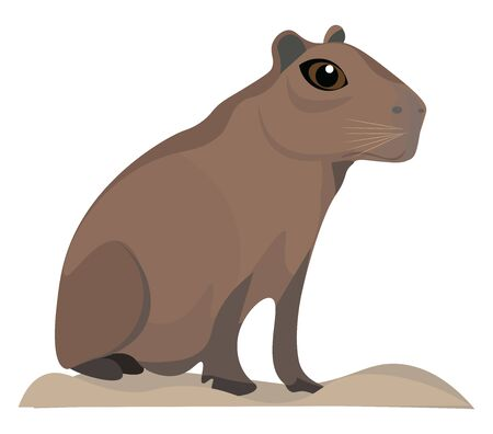 Illustration pour It is a pig-sized South American rodent and it is tailless., vector, color drawing or illustration. - image libre de droit