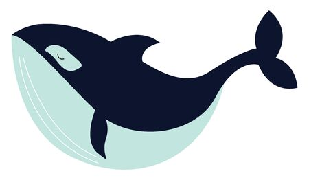 Big whale, illustration, vector on white background.