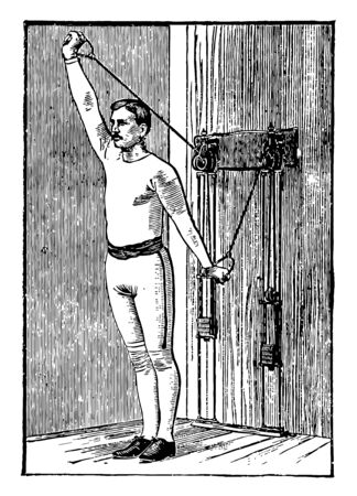 Man working out by pulling weights from both arms. He is pulling weight from one arm while other arm relaxes, vintage line drawing or engraving illustration.