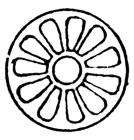 Rosette Design as the Knop and Flower by alternating with a closed bud, it alternates with the palmette in forming the Sha Abbas pattern, vintage line drawing or engraving.