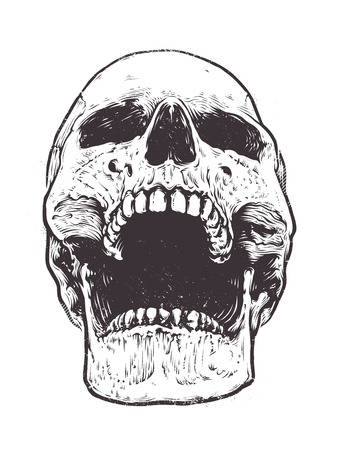 Anatomic Skull Vector Art. Detailed hand-drawn illustration of skull with open mouth. Grunge weathered illustration.