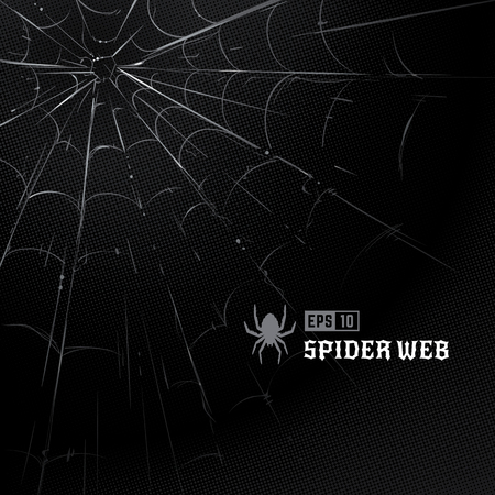 Ilustración de Vector set of spider webs on black halftone background. Hand-drawn spider webs. Vector arts. - Imagen libre de derechos