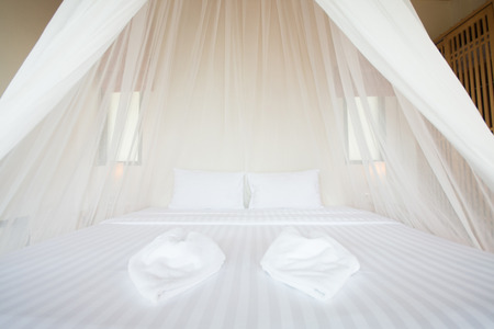 white mosquito net over a bed in a luxurious hotel, interior
