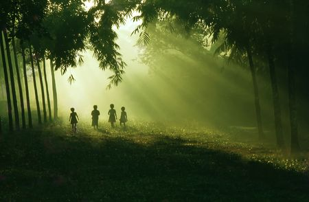 The children walking and playing in bright morning.