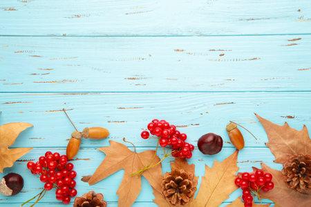 Photo pour Autumn composition on blue. Acorn, pine cone, anise star on blue background - image libre de droit