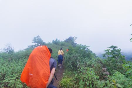tourist walking through heavy fog in tropical rainforest in mon jong doi at Chaing mai, Thailand