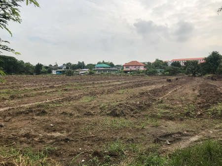 Photo for outdoor empty land for sale at Thailand - Royalty Free Image