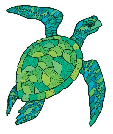 Illustration pour green sea turtle - colorful vector stylized drawing - image libre de droit