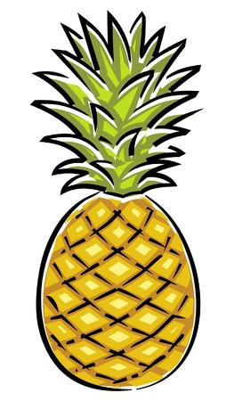 Illustration pour Pineapple (Vector) - image libre de droit