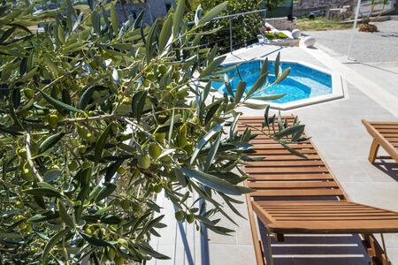 Photo pour Wooden deck chair near pool in olive yard near luxury apartments on island Brac in Croatia - image libre de droit