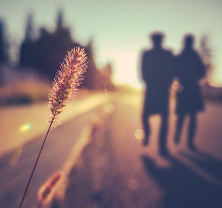 Photo pour Retro Vintage Soft Focus Romantic Senior Couple Walking At Sunset In Summer - image libre de droit