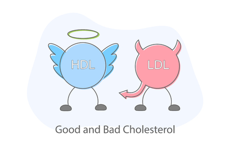 Good and bad cholesterol flat design Illustration vector.
