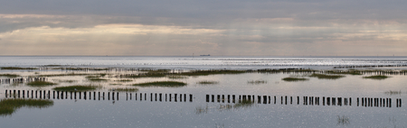 sunset on the mud flat in germany