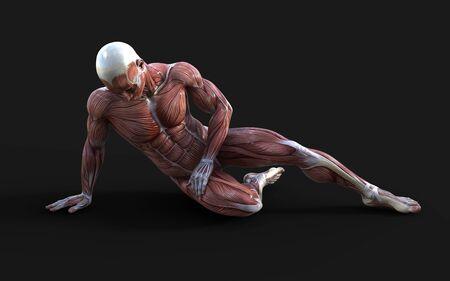 Foto de 3D render of male figures pose with skin and muscle map on dark - Imagen libre de derechos