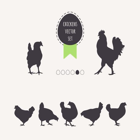 Set of chickens. Silhouettes of laying hens, rooster. Frame egg with green ribbon.