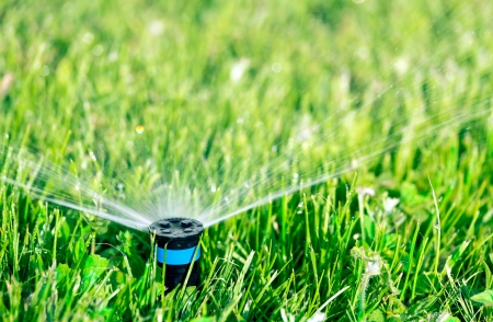 Lawn sprinkler watering green lawn