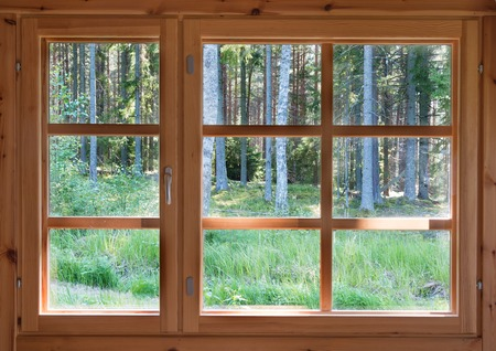 Foto de Green sunny view of summer woods in the wooden country window - Imagen libre de derechos