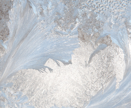 A photograph of ice crystals formed in the shape of feathers on a windowpane
