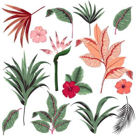 Illustration for Set of  vector  beautiful artistic bright tropical with exotic forest. Colorful original stylish floral background print, bright rainbow colors on white. - Royalty Free Image