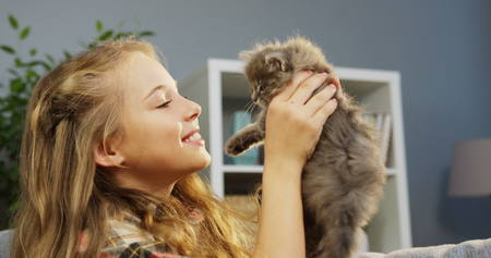 Close up of pretty little girl holding up a small cute kitty-cat and touching nose to nose on the living room background. Indoors. Portrait shot