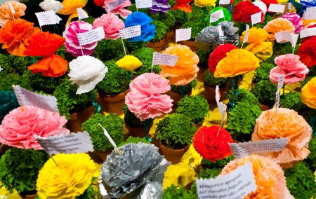 Popular saints festival in Lisbon, Portugal  Traditional Manjerico, little potted plants of newly sprouted Basil are given as gifts during the month of June  Colorful paper-mache flowers are placed into pots alongside one of the many popular verses about