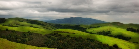 Panorama of beautiful hilly pasture in California in spring
