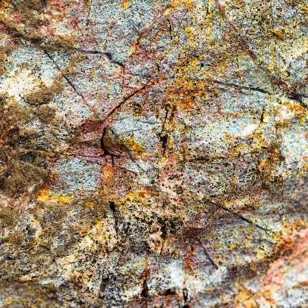Patterned stone with its natural beauty