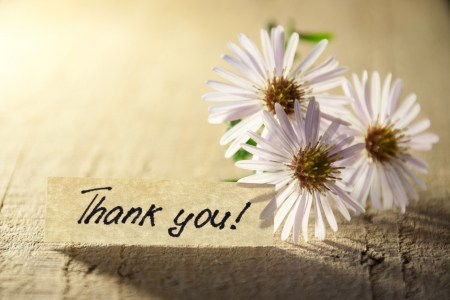 Banner with thank you and  blossoms.