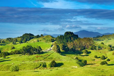 Landscape with green hills and blue sky, New Zealand