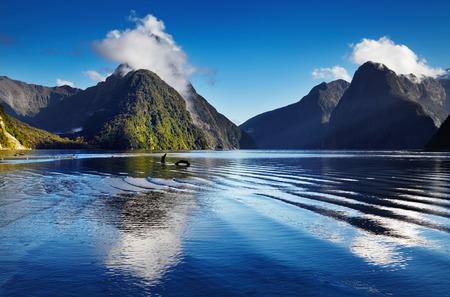 Foto de Fiord Milford Sound, South Island, New Zealand - Imagen libre de derechos