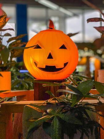 Foto de Plastic pumpkin halloween jack o lantern surrounded by plants - Imagen libre de derechos