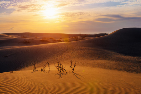Photo pour Dawn in the dune desert in Kazakhstan - image libre de droit