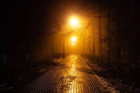 Photo pour Autumn city park at night in fog. - image libre de droit