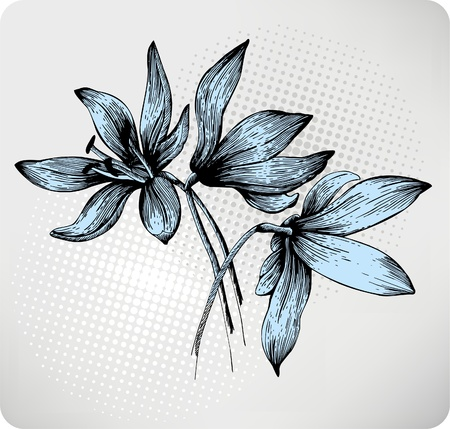 Illustration for Bouquet of spring Scilla, hand-drawing. Vector illustration. - Royalty Free Image
